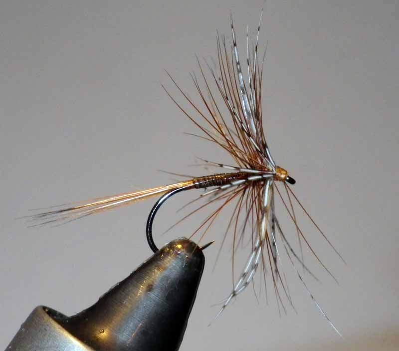 Trout Fishing Flies Gold Head Nymph Buzzers 33J-22 Hook sizes 10 12 or 14